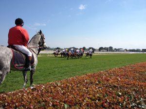 Horse race at Caulfield Racecourse
