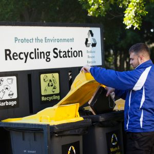 Quayclean team member disposing cardboard into a recycling bin